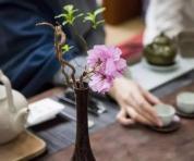 【茶与艺术】茶与花的因缘